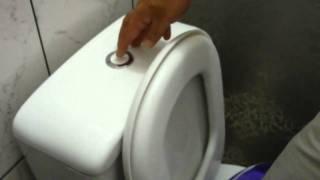 Como desentupir vaso sanitário com bola