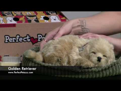 Video: Perfect Petzzz® Schlafende Welpen