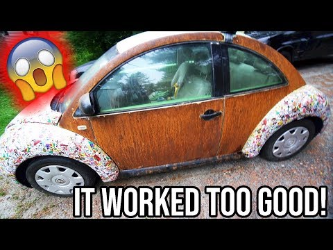 FORGOT ABOUT THE BEETLE.. HOLY RUST!