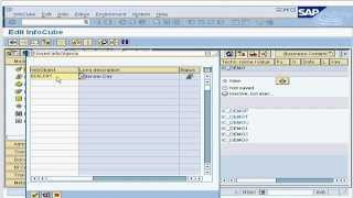 10. التحرير القياسية InfoCube الوقت الأبعاد في SAP Business Intelligence / مستودع (BI / BW)