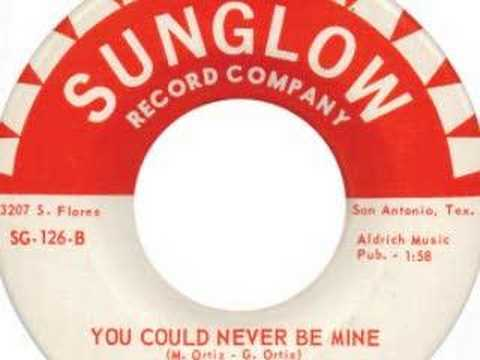 The Sounds - You Could Never Be Mine