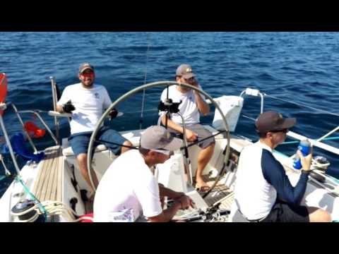 Sailing the Dubai-Muscat race - Kuwait Offshore Sailing Association