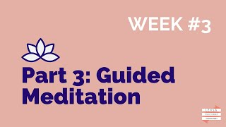 Series 2 // Part 3: Guided Meditation Process