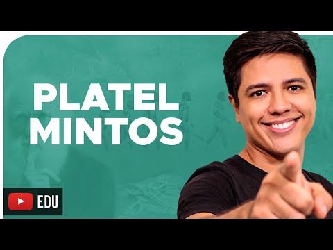 PLATELMINTOS - ZOOLOGIA - REINO ANIMALIA - Prof. Kennedy Ramos