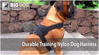 Durable Nylon Dog Harness For Training On Bullmastiff