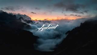 The Ambientalist - A Children's Dream