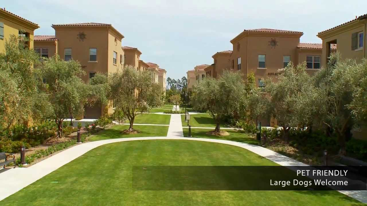 Palmeras Apartment Homes For Rent in Irvine, CA - YouTube