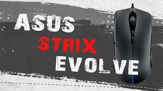 Обзор игровой мышки Asus Strix Evolve