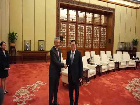 PM Lee Hsien Loong meeting NPC Standing Committee chairman Zhang Dejiang