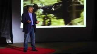 Що саме потрібно Україні сьогодні? Петро Порошенко at TEDxIvanoFrankivsk
