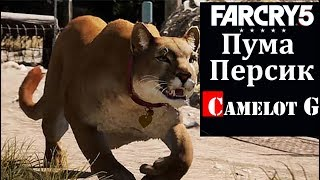 Кис-кис пума Персик Far Cry 5 Camelot G обзор видео прохождение.