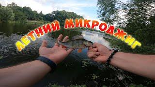 Микроджиг на пруду в центре города Рыбалка с сыном Нашли стаю окуня