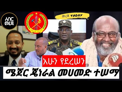General Mohammed Tessema spoke about the current situation in Tigray
