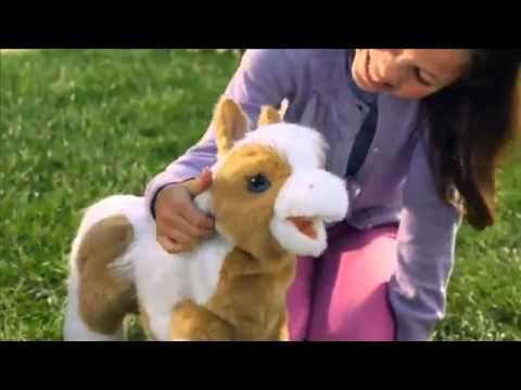 FurReal Baby Butterscotch Pony Exclusive At Toys  R  Us!