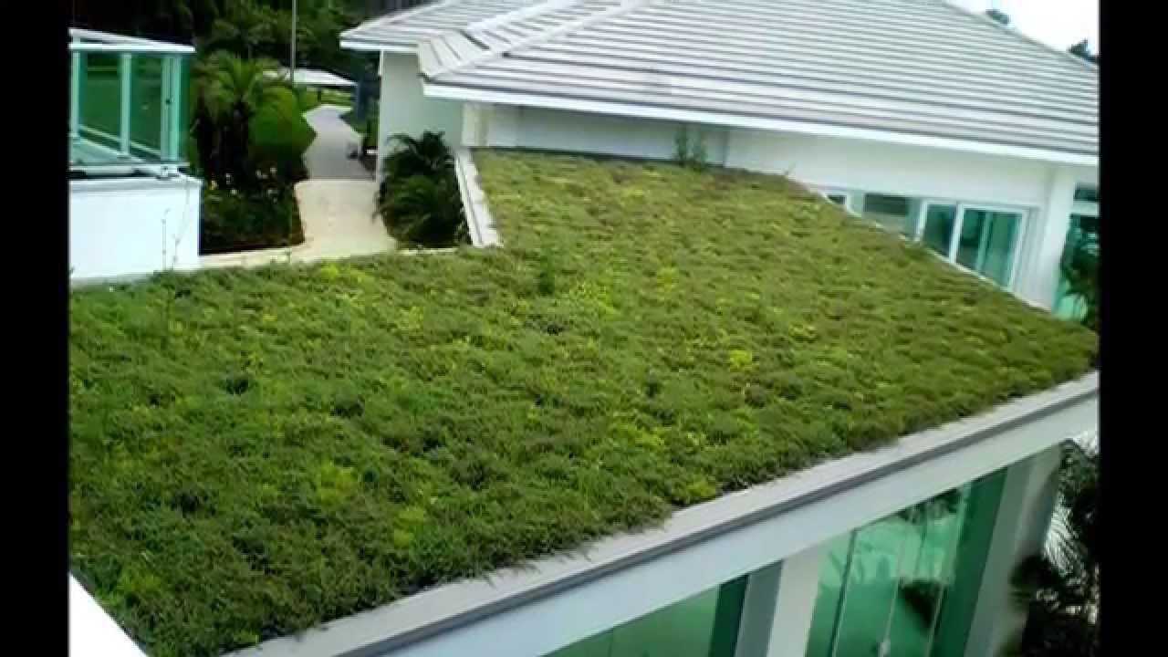 Como hacer un techo verde paso a paso youtube for Crear una cubierta de madera