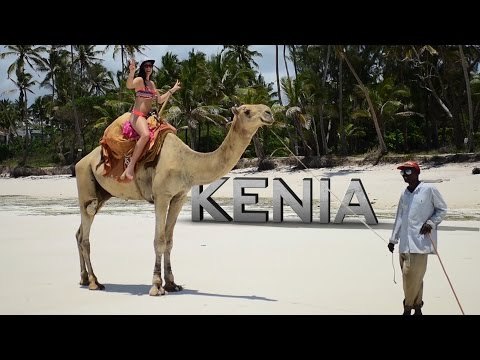 KENYA , DIANI SEA RESORT, DIANI BEACH, Safari adventure, Saltlick, 10.2016, WAKACJE KENIA, Holiday