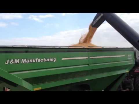 Loftness grain loader 10 corn bag Massey new holland high m