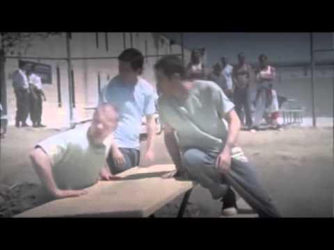 The Stand Film Deutsch
