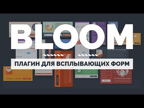 Обзор плагина Bloom. Отличный плагин для размещения форм подписки