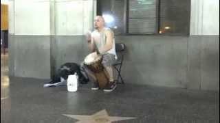 Hollywood Djembe