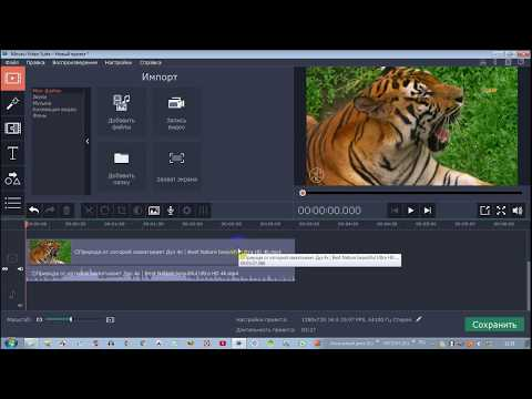 Обрезка видео в программе Movavi Video Editor