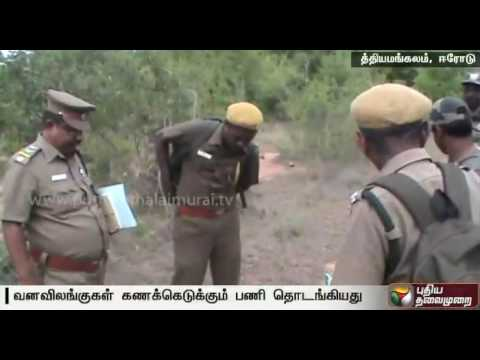 Seven day census begins in Sathyamangalam Tiger Reserve from today