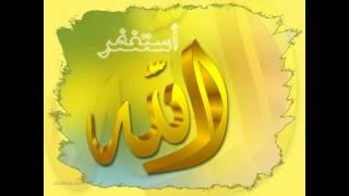 Новый проект   Женщина в исламе
