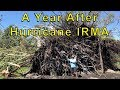 A Year After Hurricane IRMA