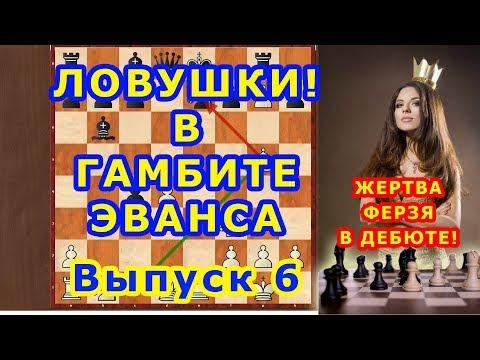 Шахматы ♔ ЖЕРТВА ФЕРЗЯ! ♕  в дебюте ГАМБИТ ЭВАНСА ⚔ Шахматные ЛОВУШКИ!