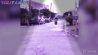 MELHORES VÍDEOS ENGRAÇADO (2020)