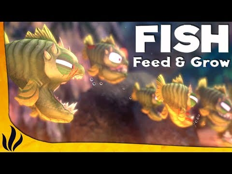 JE MONTE UNE ARME DE POISSONS ! (Feed and Grow: Fish)