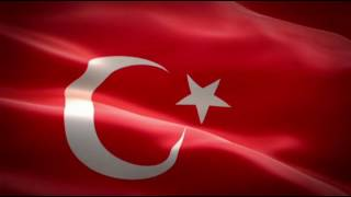 Türk bayraklı kadın resmi