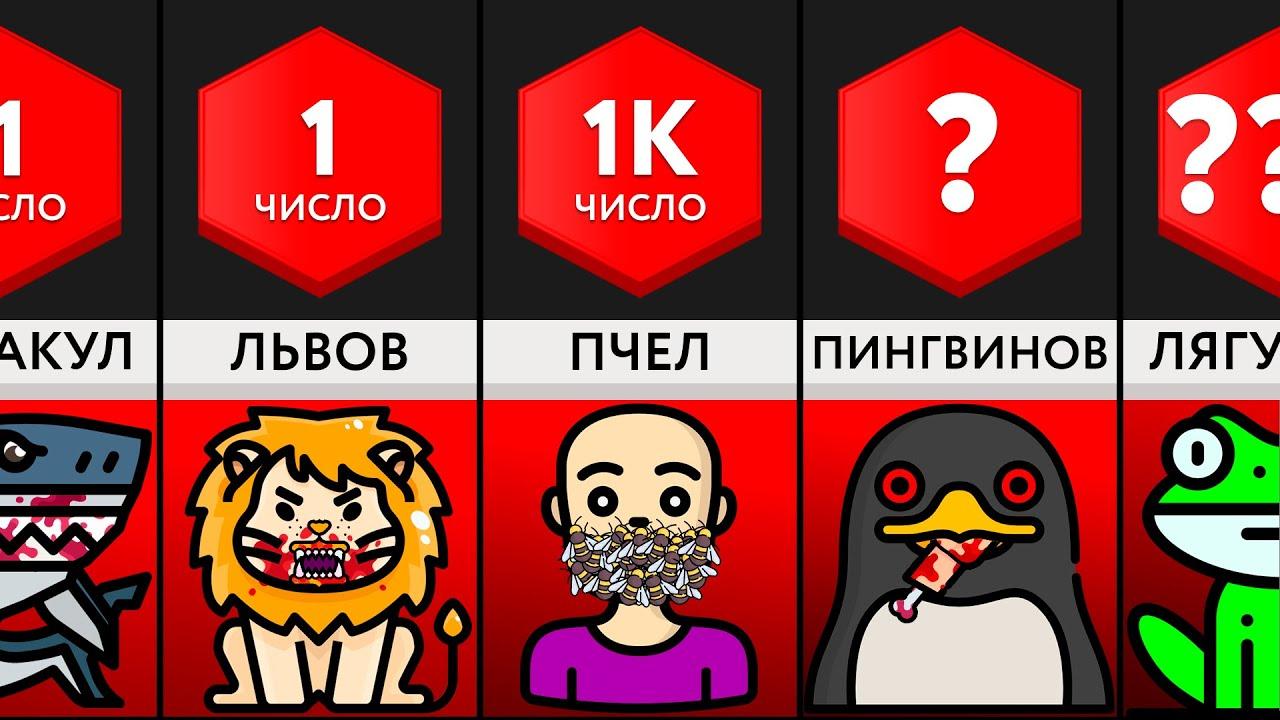 Сколько Животных Убьёт Вас