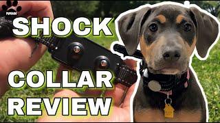 Dog Care Dog Shock Collar Review  Remote Dog Training Collar