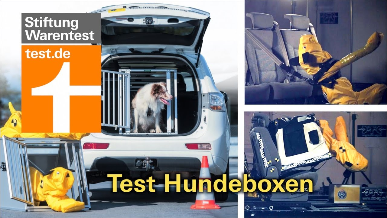 test hundeboxen f rs auto welche am besten sch tzen v. Black Bedroom Furniture Sets. Home Design Ideas