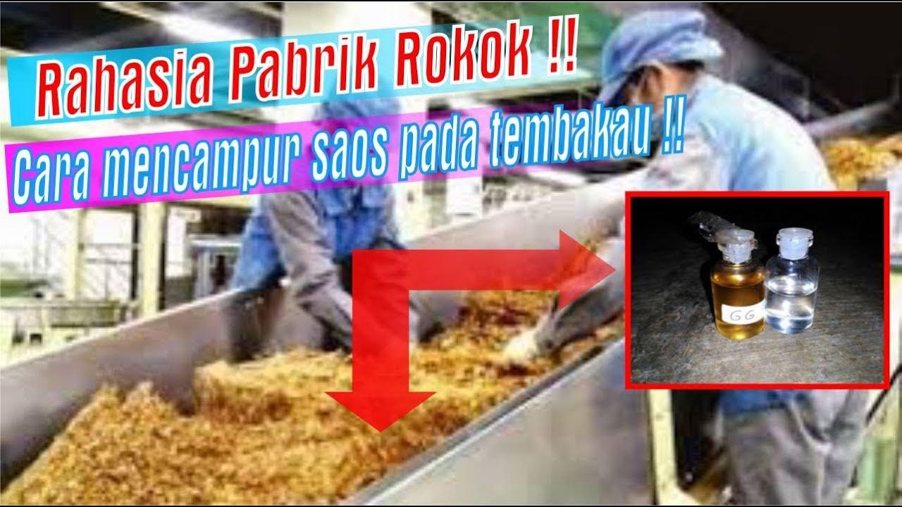 Rahasia Pabrik Rokok Tips Mencampur Saos Tembakau Youtube