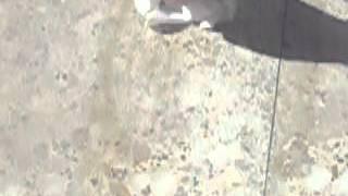 Como quitar manchas de cemento del suelo