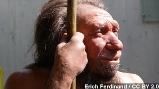 Oldest Bone Ever Sequenced Shows Human/Neanderthal Mating
