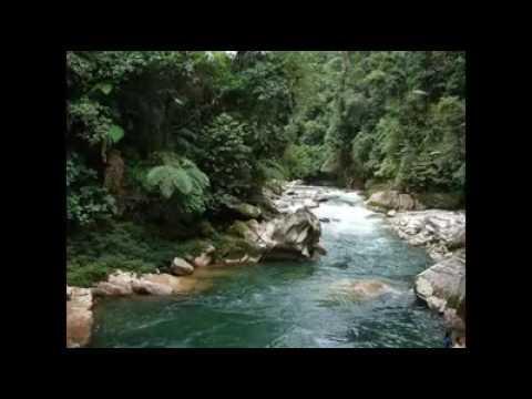 A orillas del Zamora - Pasillo ecuatoriano -