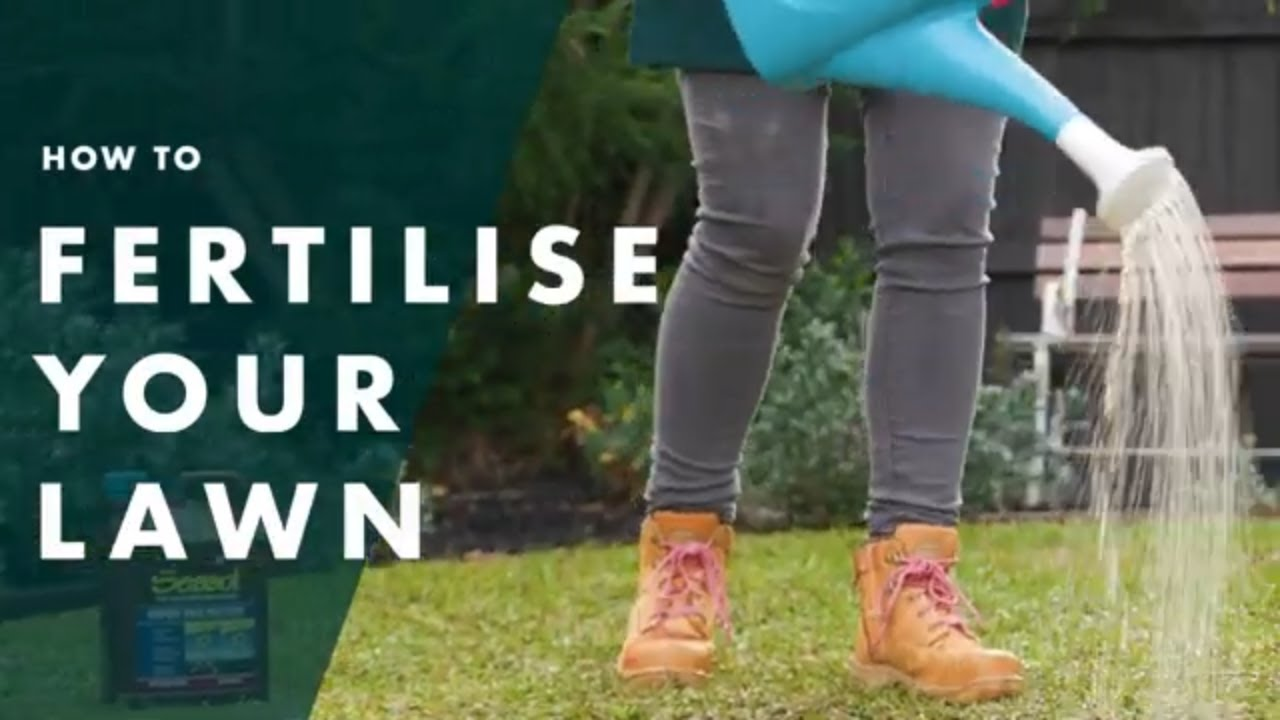 How To Fertilise Your Lawn | Bunnings Warehouse