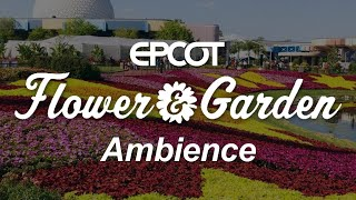 Epcot Flower and Garden Festival Ambience | Disney World Epcot Music and Ambience Scenescape
