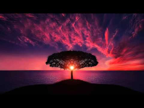 4 Hours Alpha Scale Pure Tone - Isochronic Binaural Beat