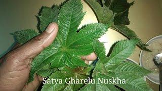 पीलिया रोग ( Jaundice) से छुटकारा सिर्फ 5 दिन में/ Jaundice Ka Gharelu Upchar