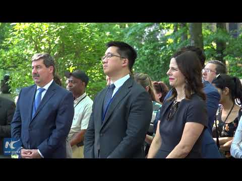 World Bee Day celebrated at UN headquarters in New York