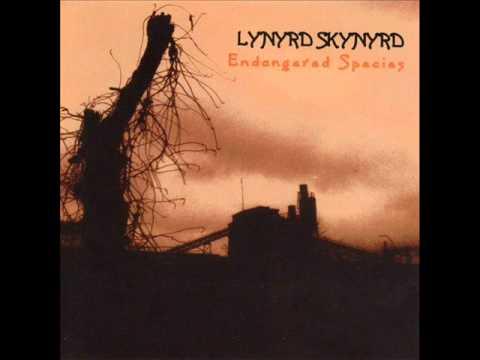 Lynyrd Skynyrd - The Last Rebel.wmv