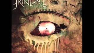 Skinlab - Raza Odiada (Pito Wilson)