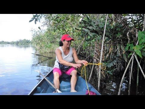 Cathy Guyana 17