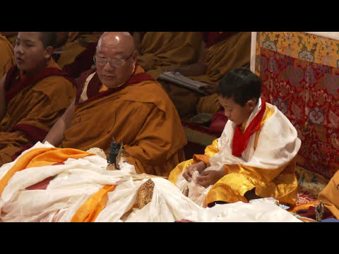 Introduction of Kyabje Bokar Rinpoche's Yangsi - 正式介紹波卡仁波切轉世祖古