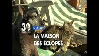 30 millions d'amis 10 06 2012