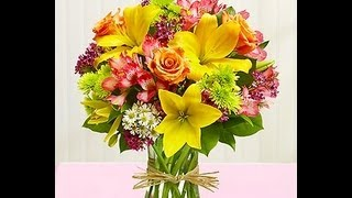 Flower Delivery Newark NJ|1-800-444-3569|Send Flowers Newark NJ|Florist Newark NJ